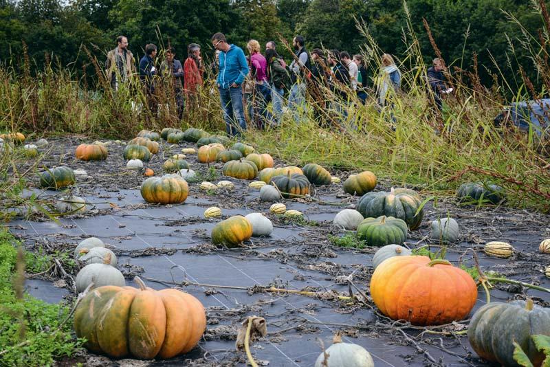 Un groupe d'élèves a visité la ferme du Gaec de la Terre et des Hommes, lors de la journée portes ouvertes organisée par le groupement des agriculteurs biologiques.