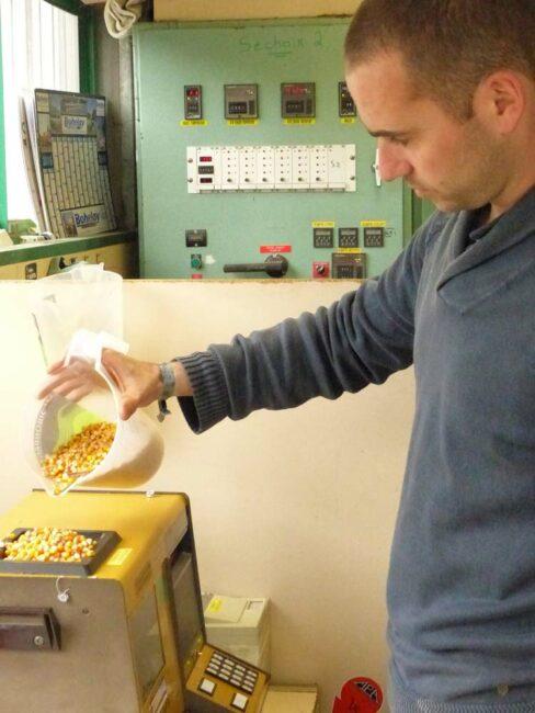 L'une des principales missions de Cédric Renaud, responsable du séchoir de La Croix-Helléan (56), est de vérifier la qualité et l'humidité des grains afin de piloter au mieux le séchoir.
