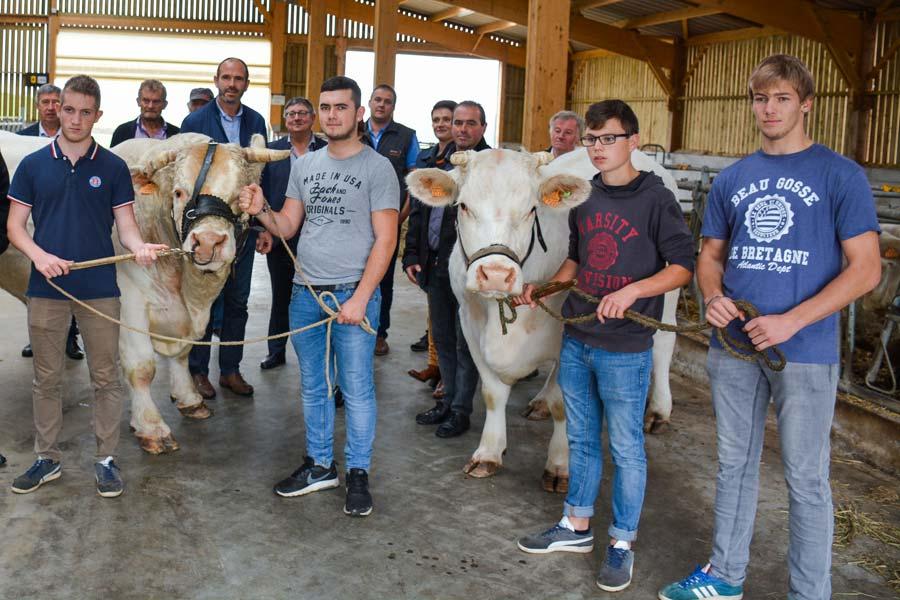 Les membres de la SDA qui organisent le salon Ohhh la vache et les partenaires avec 2 animaux de race charolaise du lycée Kerlebost à Saint-Thuriau qui participeront à l'interrégional Charolais.
