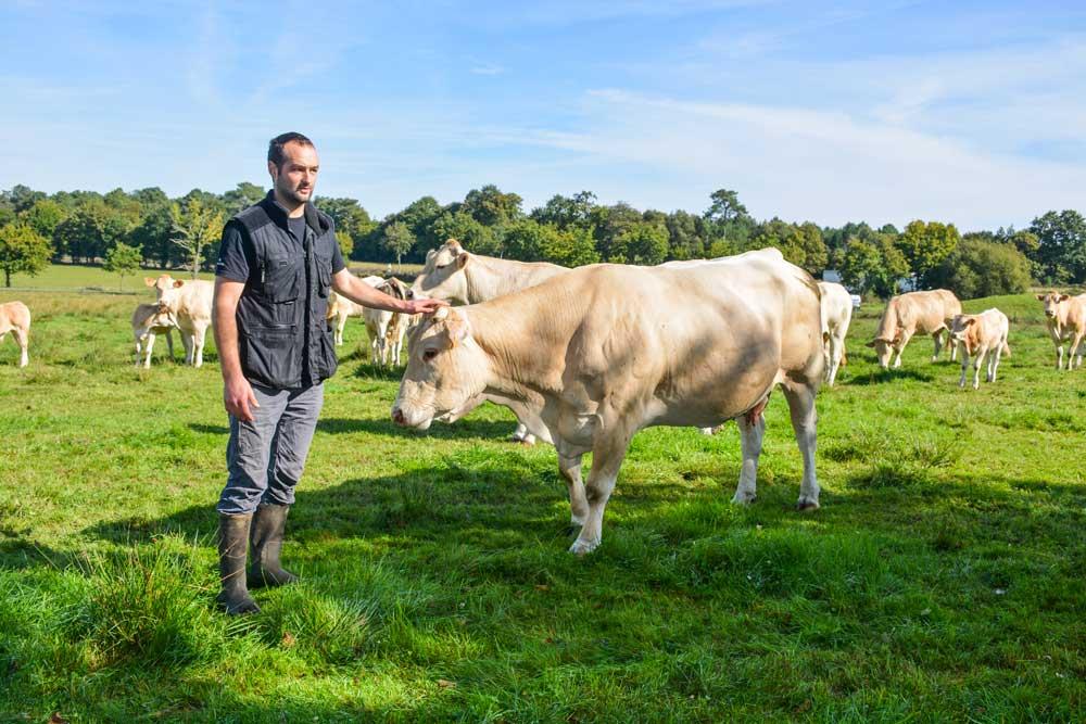 «Les prairies de l'exploitation sont constituées de multiples espèces, mais aussi de joncs moins appréciés des vaches…», explique Antoine de Vallavieille.