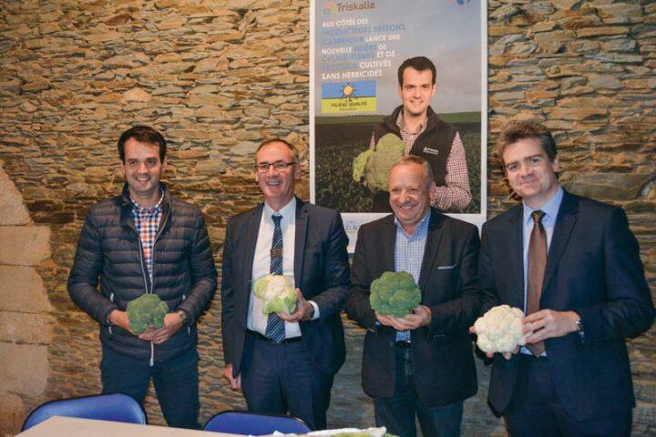 De gauche à droite : François Le Bihan, producteur de légumes, Bernard Le Brech, directeur régional Carrefour, Georges Galardon, président de Triskalia et David Deschamps, directeur de la catégorie surgelés Carrefour.