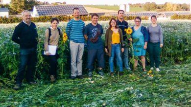 Photo of Sensibilisation aux enjeux de l'agriculture de conservation des sols