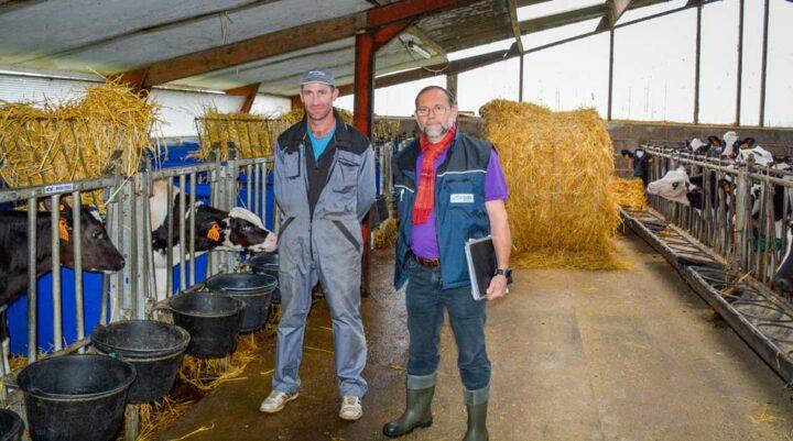 Nicolas Prigent et Hervé Berdellou, GDS Bretagne, devant les cases individuelles dans la nurserie.