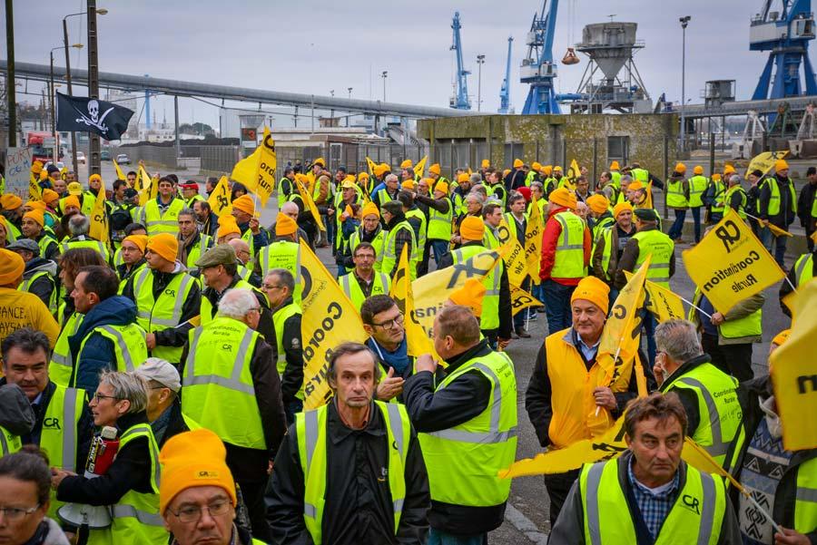 Plus de 200 adhérents de la Coordination rurale, de plusieurs régions françaises, se sont invités sur le port de Lorient, mardi matin pour dénoncer les distorsions de concurrence.