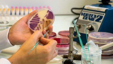 Photo of Des traitements aux antibiotiques plus courts