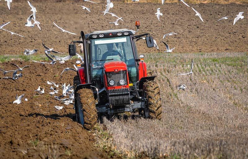 Dans un contexte de développement des résistances aux herbicides, le labour est une solution très efficace pour diminuer la pression en mauvaises herbes.