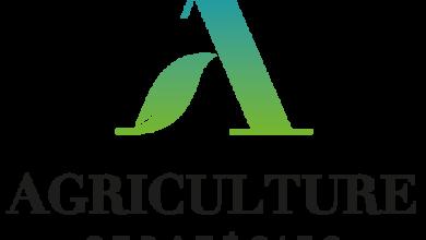 Photo of Agriculture stratégies propose de créer un Conseil de sécurité alimentaire mondial