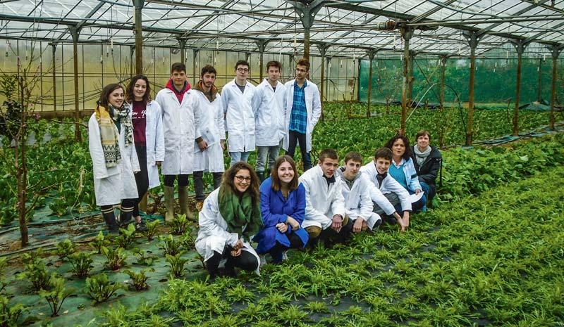 Les élèves ont pu bénéficier des structures de production du lycée, et de l'aide précieuse d'Isabelle Jaffro, professeur de biologie, et d'Élise Breton, technicienne de laboratoire du lycée.