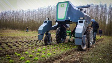 Photo of Maraîchage : de nouvelles technologies efficaces présentées au Sival