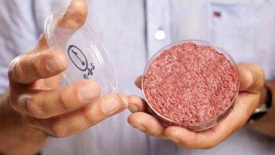 Photo of Un nouveau fonds européen de capital-risque s'intéresse à la viande in vitro