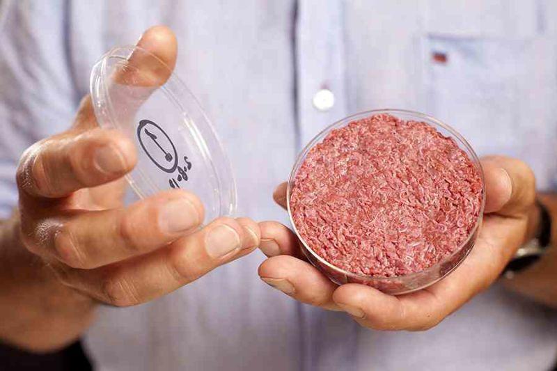 viande-in-vitro