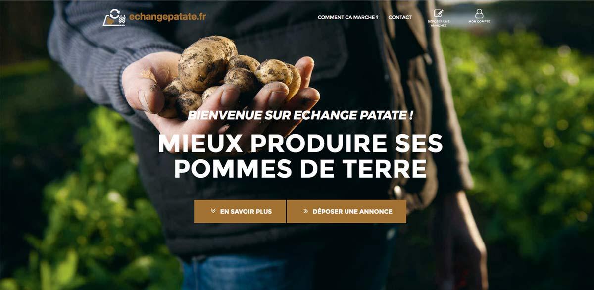 POMME-DE-TERRE-echange-patate