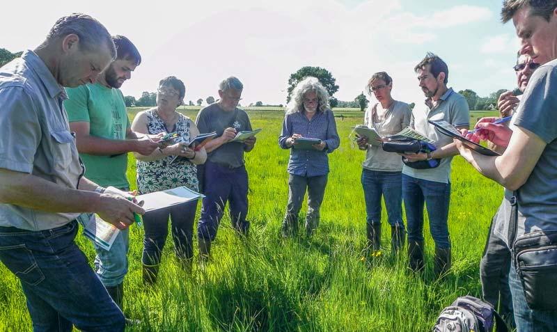 Le jury se rend sur les parcelles afin de juger à la fois l'intérêt agronomique de la parcelle pour l'exploitation et la diversité des plantes présentes.