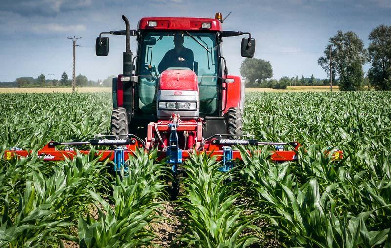 Réalisé en bonnes conditions, un binage peut remplacer la deuxième intervention herbicide, souvent nécessaire pour obtenir un résultat correct.