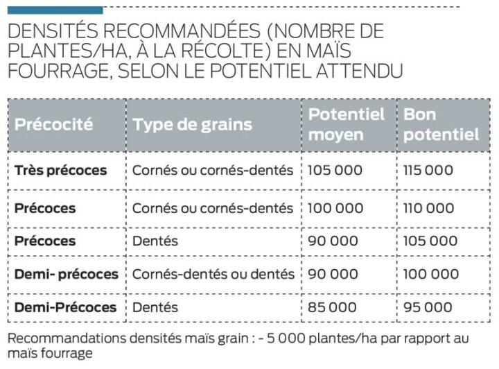 densite-semis-mais