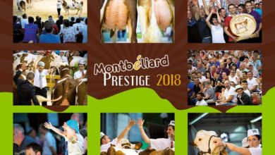 Photo of Le Montbéliard Prestige, mercredi 9 et jeudi 10 mai à Besançon
