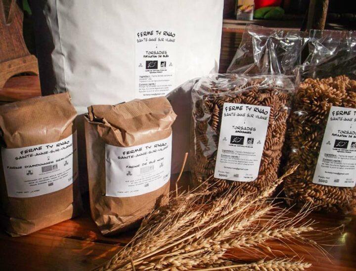 Les céréales sont transformées en farines et pâtes sèches.