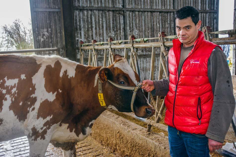 Xavier Rannou est un habitué des concours. Il présentera une dizaine d'animaux de son élevage au concours.