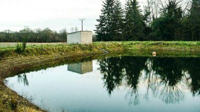 Photo of L'irrigation, sujet primordial en légumes industrie