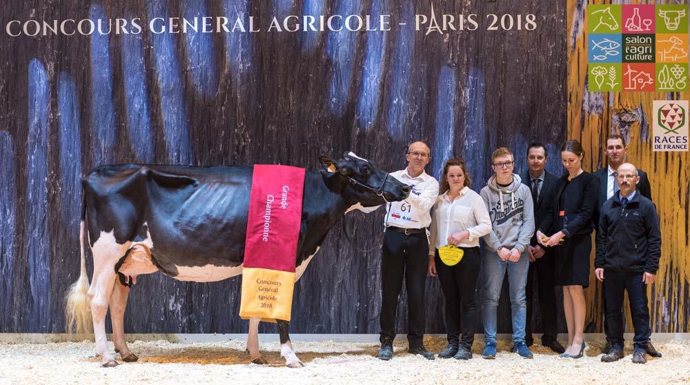 Après avoir été désignée Championne et Meilleure mamelle jeune, Stel Jefa, au Gaec le Druillennec, est sacrée Grande Championne de Paris 2018.