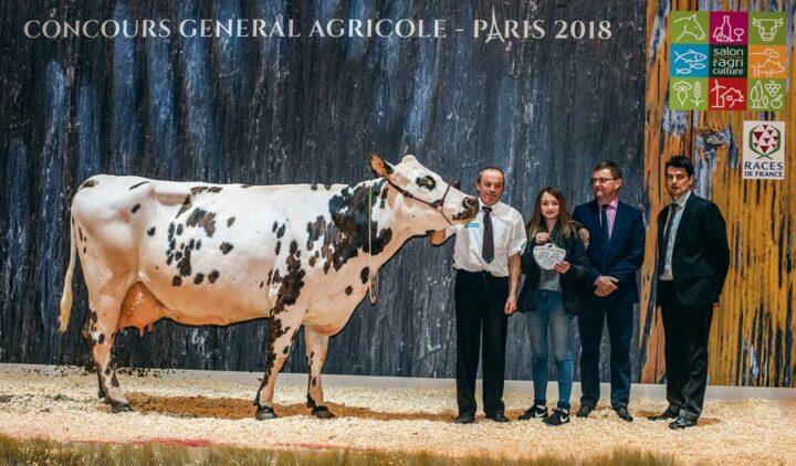 La doyenne Djakarta, au Gaec du Désert en Ille-et-Vilaine, a été désignée Meilleure laitière.