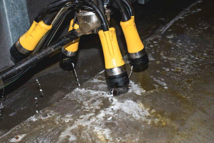 Après chaque dépose, les faisceaux ADF Milking ont la particularité d'assurer automatiquement le trempage des trayons puis la désinfection des manchons.