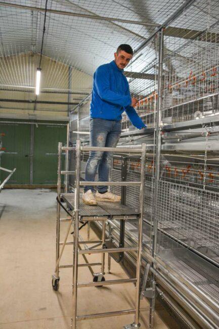 Pour les interventions d'élevage au deuxième étage de la volière, les éleveurs vont tester ce petit échafaudage afin de travailler en sécurité.