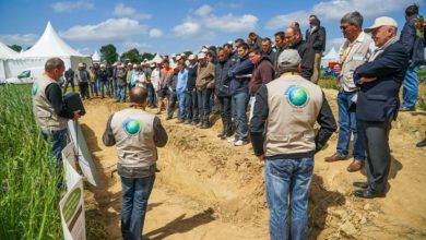 Photo of Planète Positive 2018 : rendez-vous le 12 juin à Kergrist-Moëlou