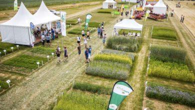 Photo of Salon de l'herbe : Utiliser davantage les fourrages