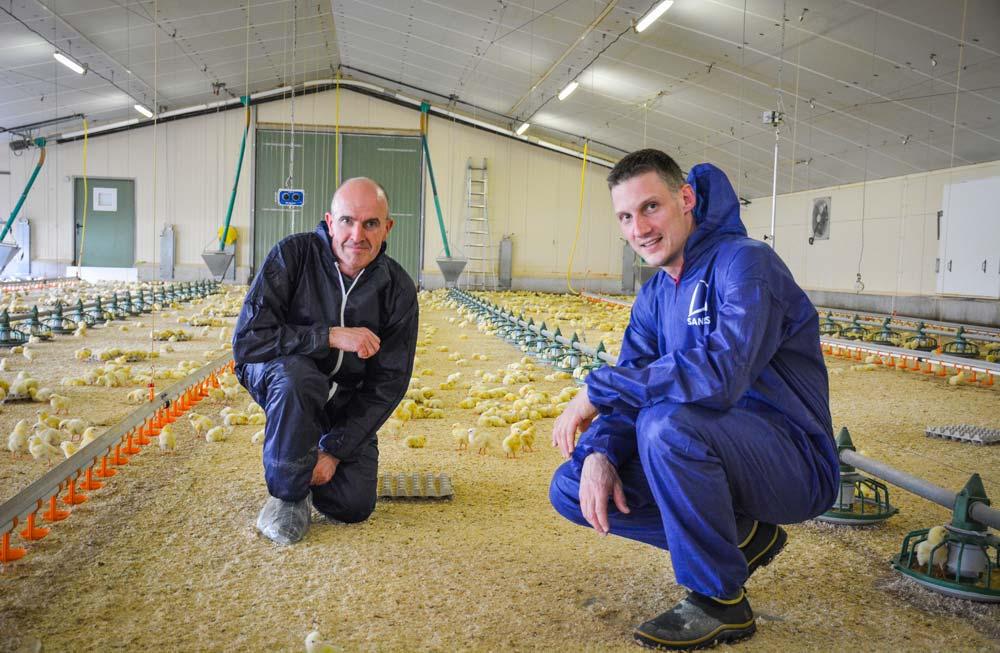 Pierre Triballier, responsable technique chez Systel, et Nicolas Quéro, aviculteur à Trévé.