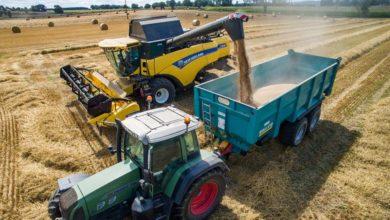 Photo of Une grosse récolte de blé tendre, à plus de 39 Mt, satisfaisante en qualité