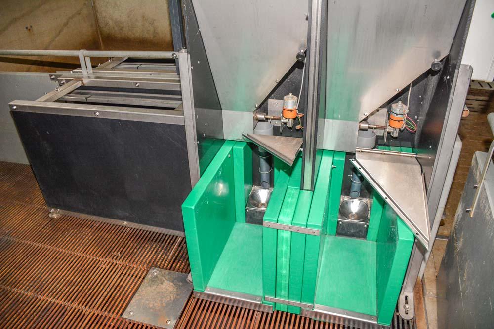 Les abreuvoirs (en vert) et le distributeur automatique d'aliment où les porcelets sont pesés à chaque prise.
