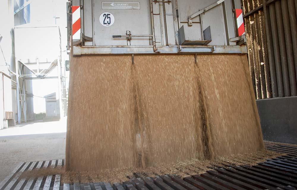 coop-grain-cereales