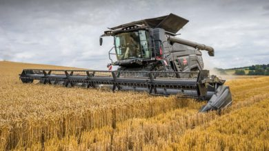 Photo of L'AGCO IDEAL s'essaie au blé breton