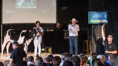 Photo of La vente de la Brasserie Holstein remporte un franc succès