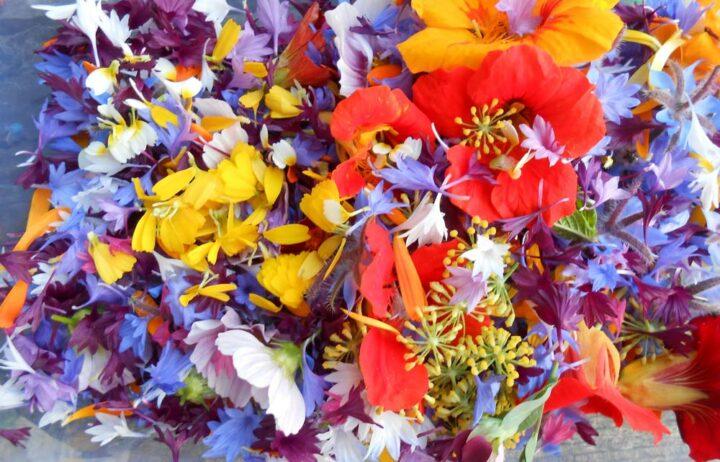 Les fleurs sont vendues de 10 à 50 centimes l'unité selon l'espèce.