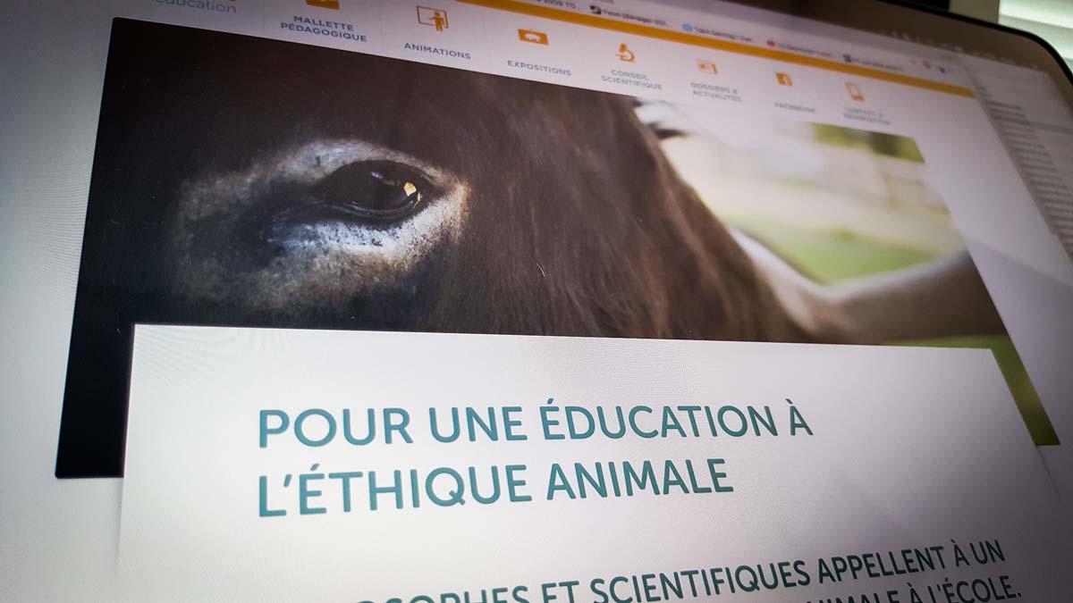 Site web de L214 dédié à l'éducation.