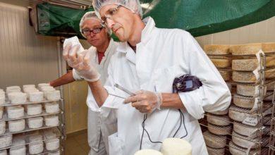 Photo of Jean-Charles prend la peine d'en faire tout un fromage