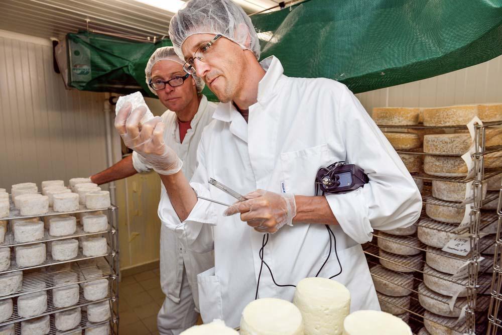 À la Bergerie des Abers, à Plouvien, Jean-Charles Ray fait le point avec Ronan Jestin sur l'affinage de ses fromages. Que ce soit en élevage caprin, ovin ou bovin, le conseiller en transformation laitière du GDS Bretagne est un précieux allié des producteurs fermiers chez qui il réalise environ 220 visites par an.