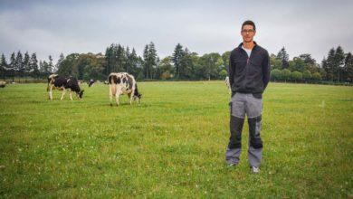 Yoann Humbert, éleveur de 30 ans, a augmenté l'autonomie du troupeau en misant entre autres sur l'intensification de l'herbe.