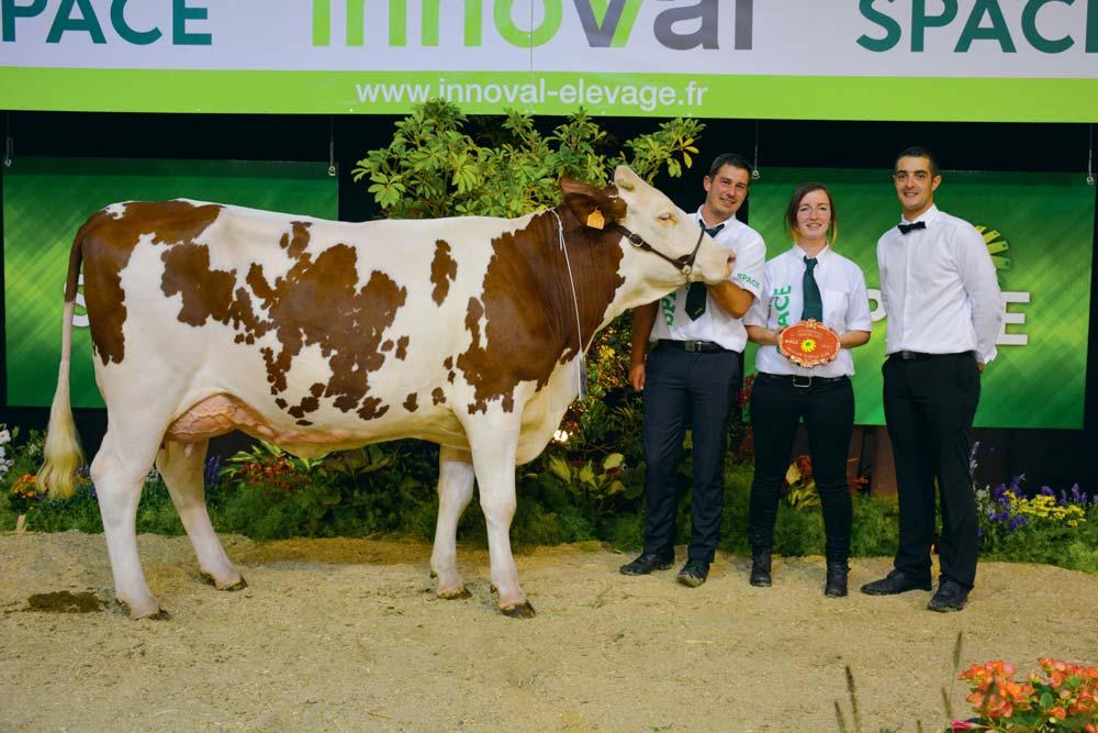 Maética une vache en 1re lactation, appartenant au Gaec Le Febvrier aux Forges (56), a remporté sa section ainsi que le prix de Meilleure mamelle jeune du concours