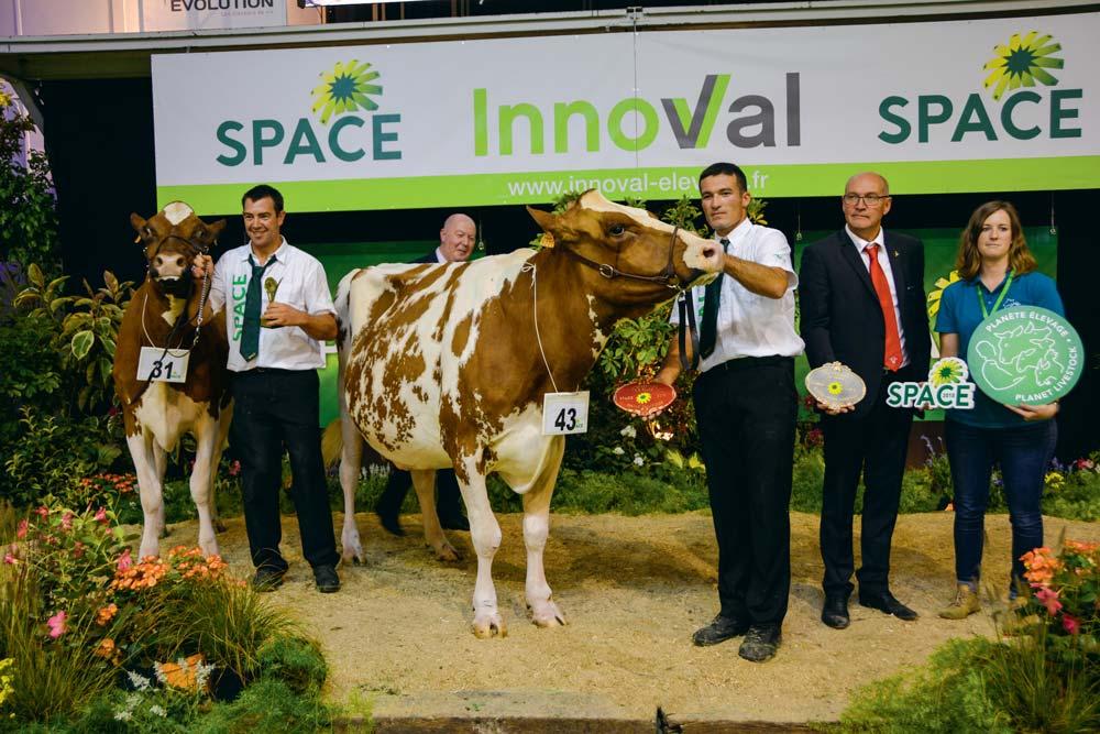 Le Gaec de Toul Manach de Plourin (29) remporte le concours avec Iliade, sacrée Grande championne, la réserve étant Lynda, issue de ce même élevage.