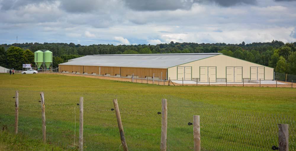 Les 12 000 pondeuses bio arriveront dans le poulailler de 110 m de long sur 24 m de large le 1er octobre.