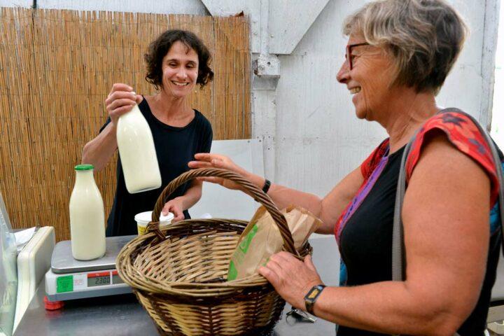 Tous les mardis, dans l'ancien poulailler du père de Benoît, un marché fermier réunit une dizaine de producteurs locaux. Isabelle y vend du lait entier et tous les produits qu'elle transforme au labo.