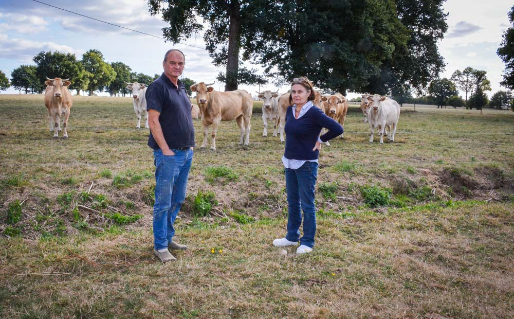 En réaction à la perte de deux jeunes veaux suite à des diarrhées néonatales en novembre 2017, Philippe et Brigitte Lehuger ont vacciné toutes les femelles qui vont vêler à partir de mi-octobre.