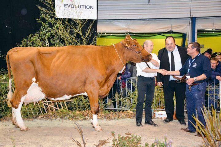 Ardèche (Origin sur Lamanu), au Gaec de la Noé, à Pleugriffet (56) a été sacrée meilleure laitière du concours. Née en 2005, elle a produit plus de 100 000 litres de lait. Sa 6e lactation affiche 10 155 kg à 48 et 35,1 (TA).