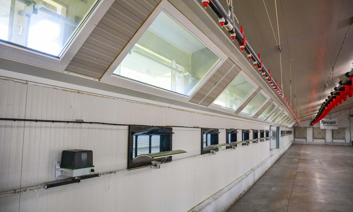 Les fenêtres sont placées dans l'angle du bâtiment ce qui limite les entrées de lumières parasites telles que les phares de camions ou de voitures.