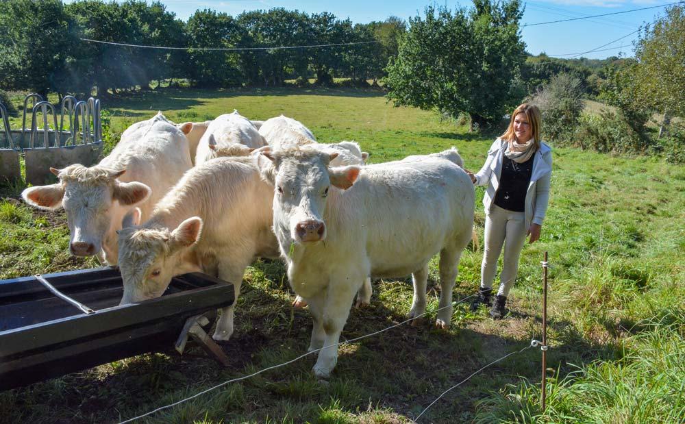 Gwen Le Roux avec les génisses. L'âge au premier vêlage est de 30 mois : un optimum aux yeux de l'éleveuse.