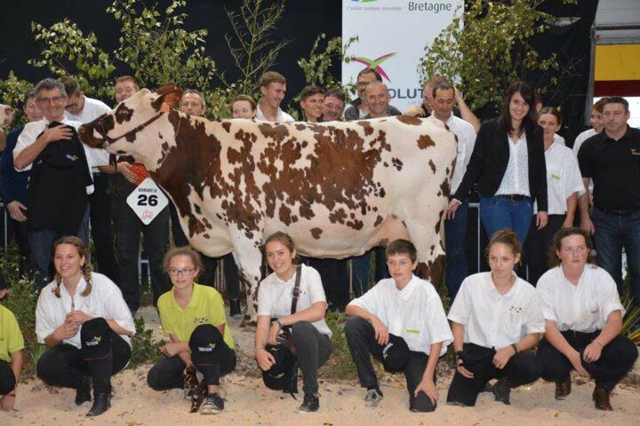 Inouie, Grande championne, a été fêtée par l'ensemble des éleveurs normands à la fin du concours.