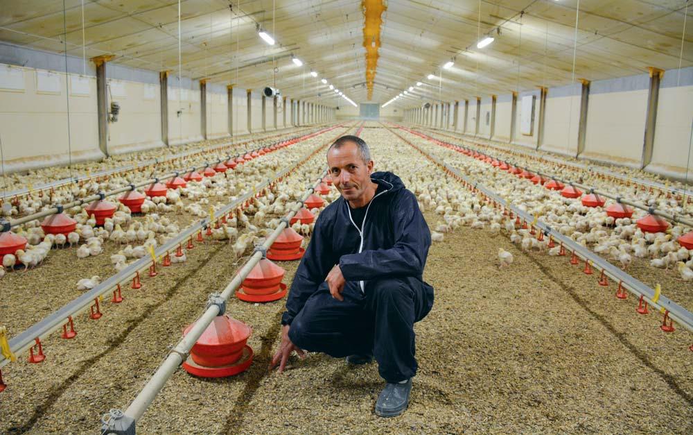 Marc Cornec, président du groupement des éleveurs Yer Breizh.